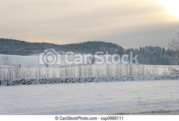 Snowfields under the Sun - csp0968111
