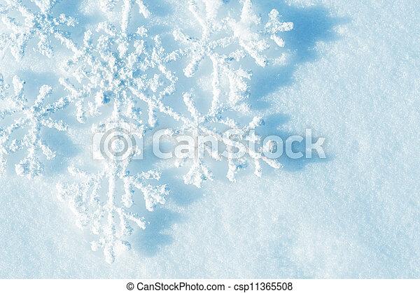 snowflakes., arrière-plan., hiver, neige, noël - csp11365508