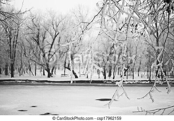 Snowing landscape in the park - csp17962159