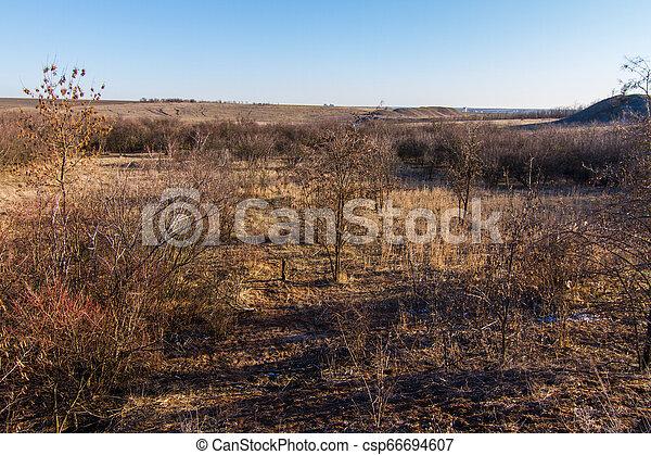 snowless, paisagem inverno, manhã - csp66694607