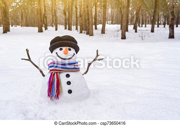 Snowman in the park - csp73650416