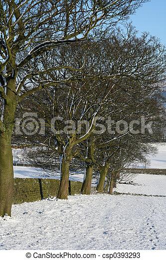 Snowy day - csp0393293