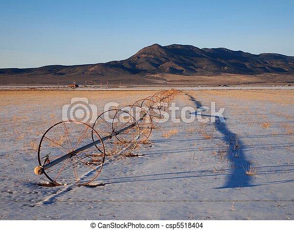 Snowy Field - csp5518404