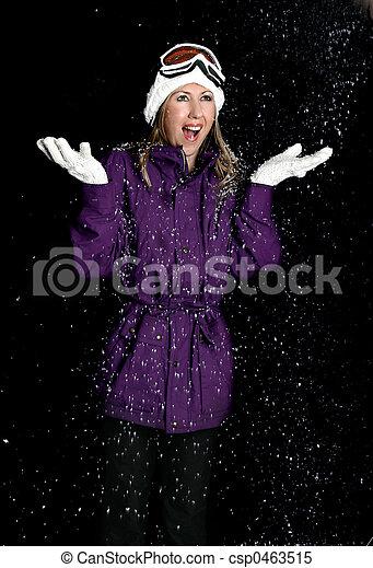 Snowy Night - csp0463515