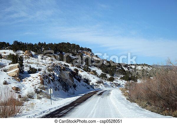 Snowy Road - csp0528051