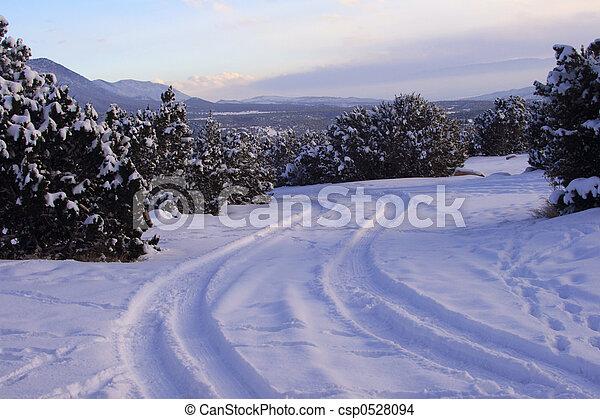 Snowy Road - csp0528094