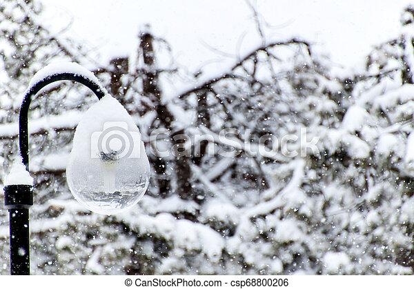 Snowy street lamp in snow blizzard. Modern ecological lighting. Winter mood. - csp68800206