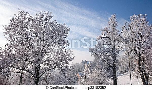 snowy trees - csp33182352