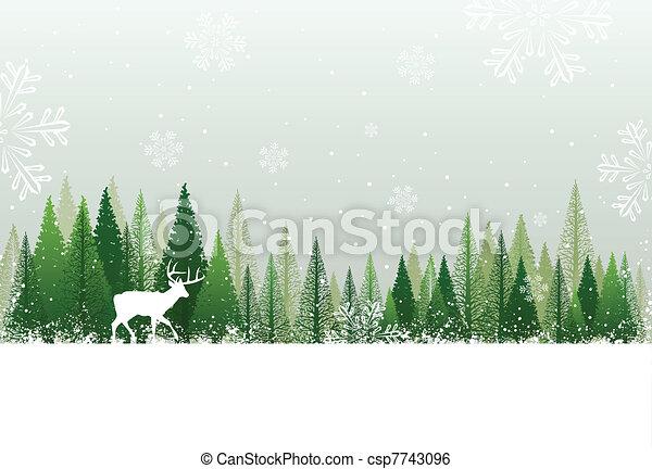 Snowy winter forest background - csp7743096