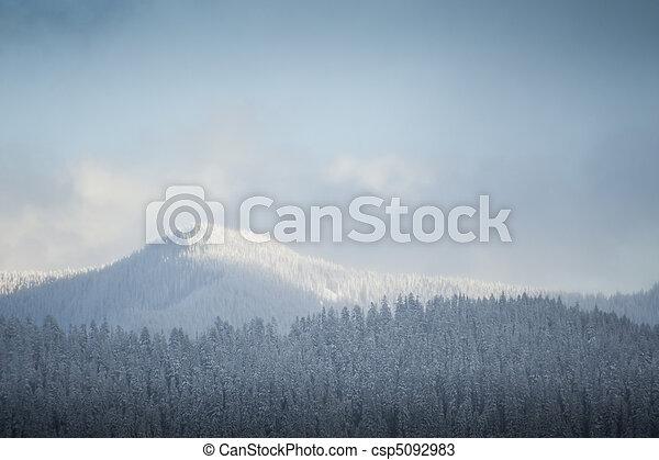 Snowy winter hills - csp5092983