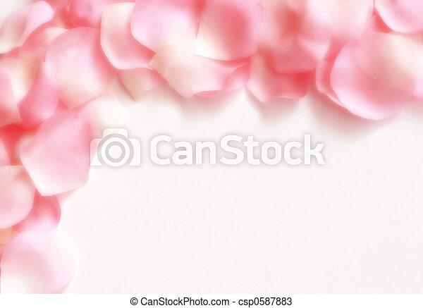 La frontera de las rosas - csp0587883