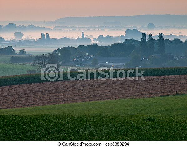 sobre, nebuloso, manhã, cedo, agrícola, paisagem, vista - csp8380294