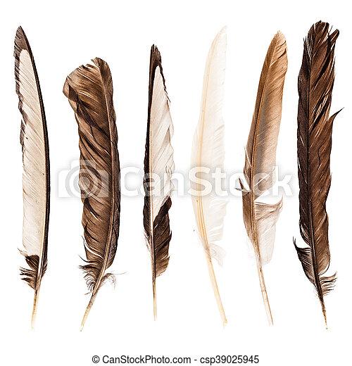 sobre, penas, branca, cobrança - csp39025945