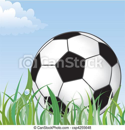 Soccer Ball - csp4255648