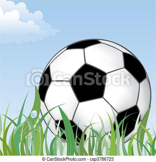 Soccer Ball - csp3786723