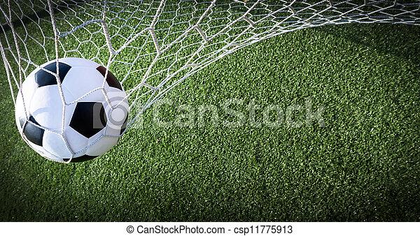 Soccer ball in goal, success concept - csp11775913