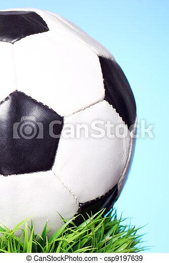 Soccer ball in grass - csp9197639