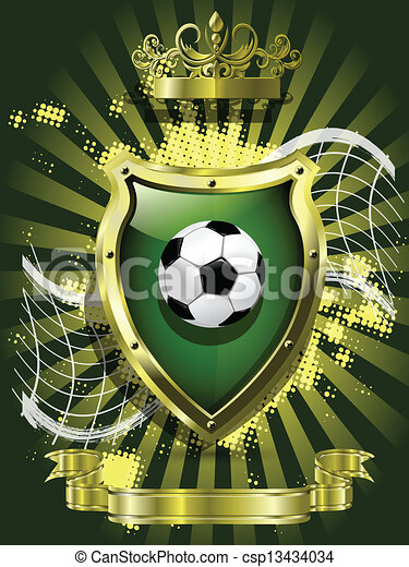 soccer ball on background of the shield - csp13434034