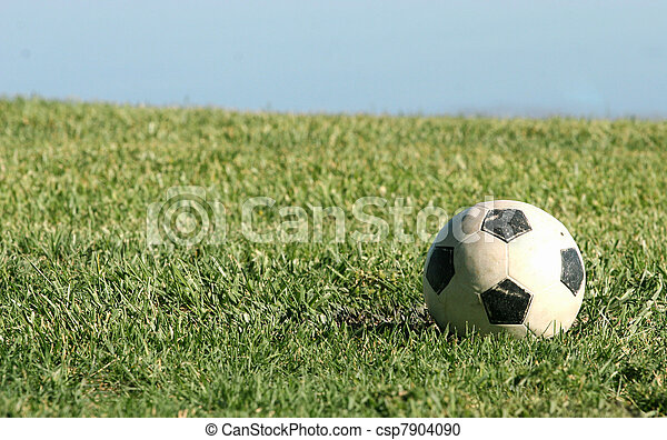 Soccer Ball - csp7904090