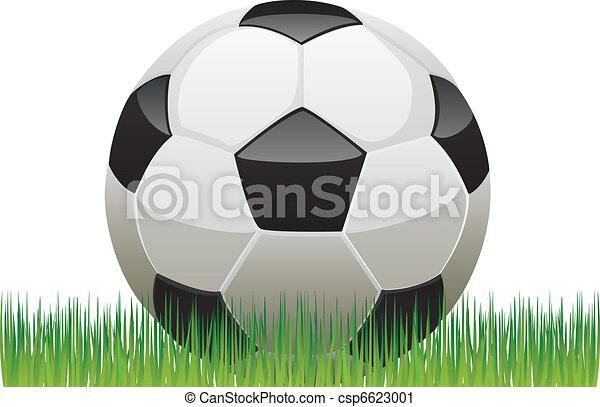 soccer ball - csp6623001