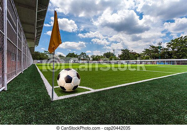 Soccer Field - csp20442035