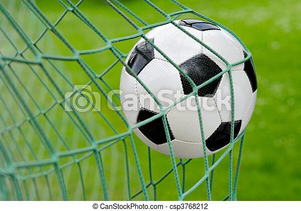 Soccer goal! - csp3768212