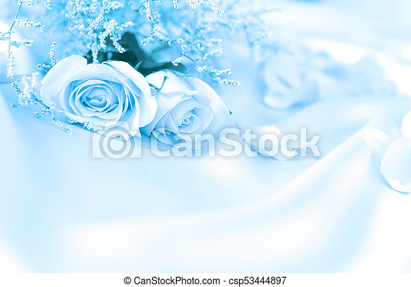 Soft Sweet Rose Flowers For Love Romance Or Wedding Background