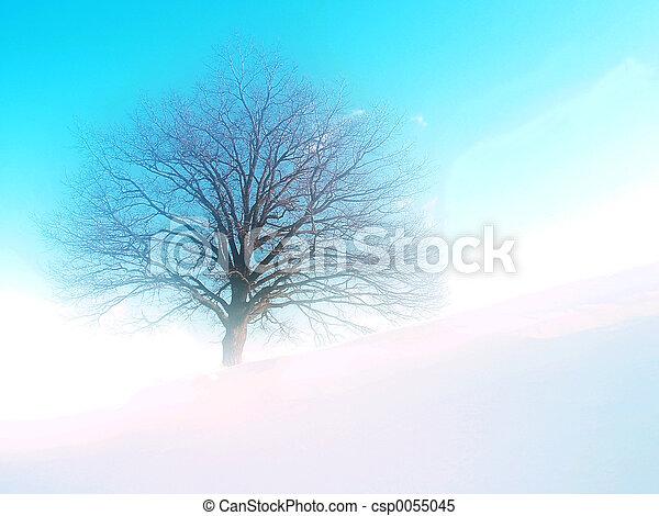 sogno, albero - csp0055045