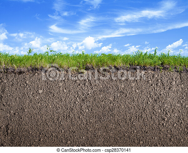 soil ground grass and sky nature background soil ground grass and