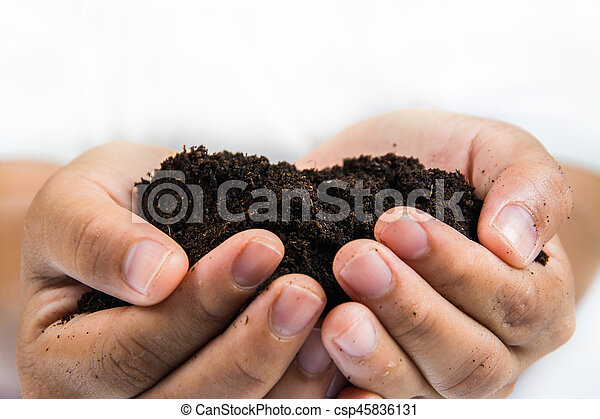 soil in hands on white background. - csp45836131
