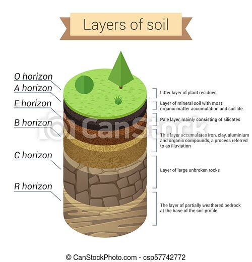 soil layers  soil is a mixture of plant residue and fine mineral particles,  which form layers