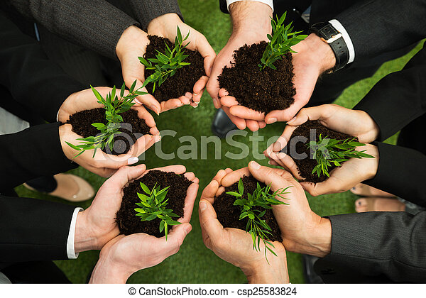 sol, plante, businesspeople, mains - csp25583824