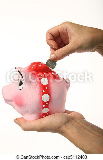 soldi, risparmiare - csp5112403