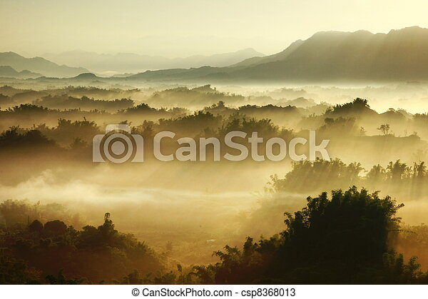sole, foschia, mattina - csp8368013