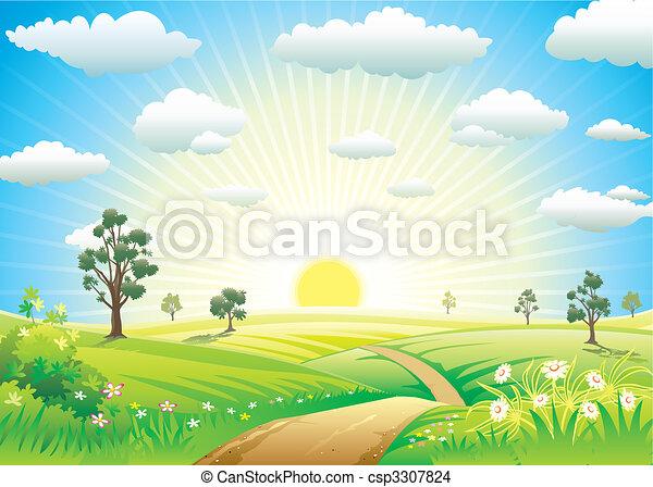 soleado, pradera - csp3307824