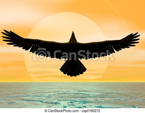 soleil, aigle - csp0180272