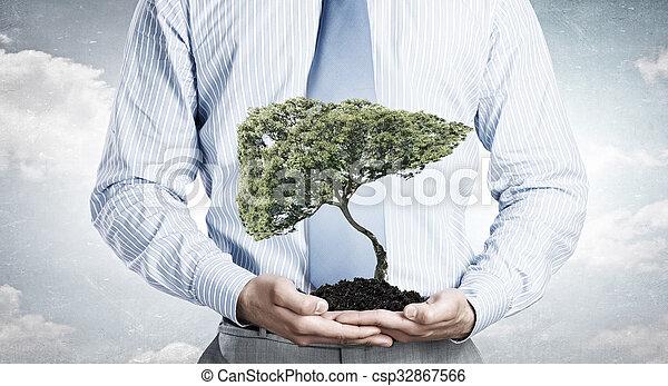 solo, árvore, verde - csp32867566