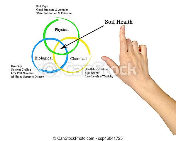 solo, saúde - csp46841725