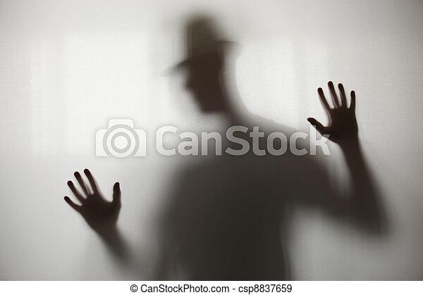 sombra, blurry - csp8837659