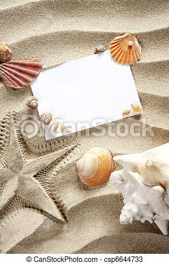 sommar, copyspace, sjöstjärna, skalen, utrymme, sand, tom - csp6644733