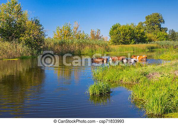 Flod I Ukraina 6 Bokstäver
