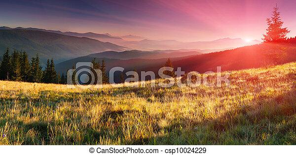 sommer, bjerge., solopgang, landskab - csp10024229