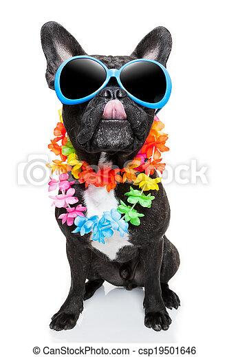 sommer feiertag, hund - csp19501646