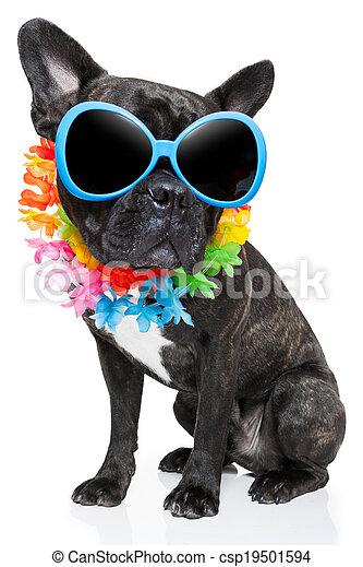 sommer feiertag, hund - csp19501594