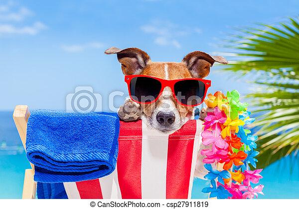 sommer feiertag, hund, urlaub - csp27911819
