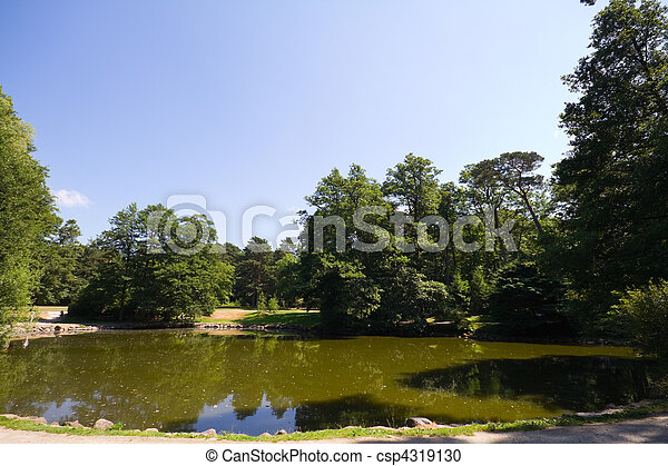 sommer, park, see - csp4319130