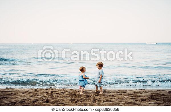 Zwei Kleinkinder spielen am Strand im Sommer. - csp68630856