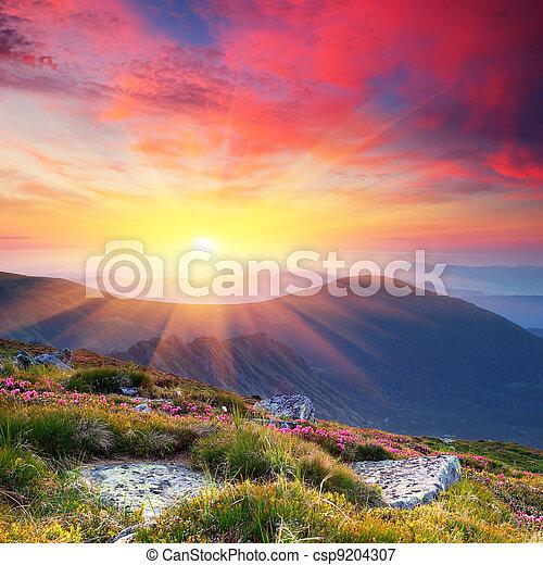 sommersonne, landschaftsbild, berge - csp9204307