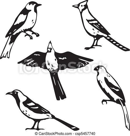 Songbirds - csp5457740