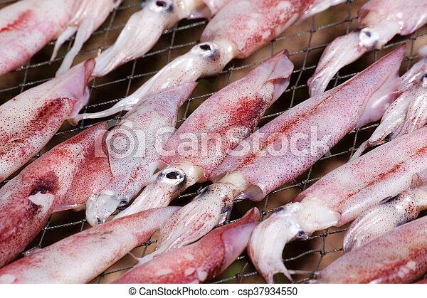 Trockener Tintenfisch mit Sonne - csp37934550